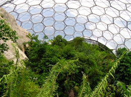 The world-famous Eden project is 15 minutes drive from Coriander Cottages